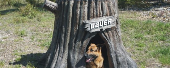 Tree stump - Custom doghouse